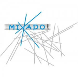 L'AMO Mikado, partenaire de l'Athénée Royal Pierre Paulus de Châtelet, ecole primaire et secondaire, secondaire général et technique, section plasturgie